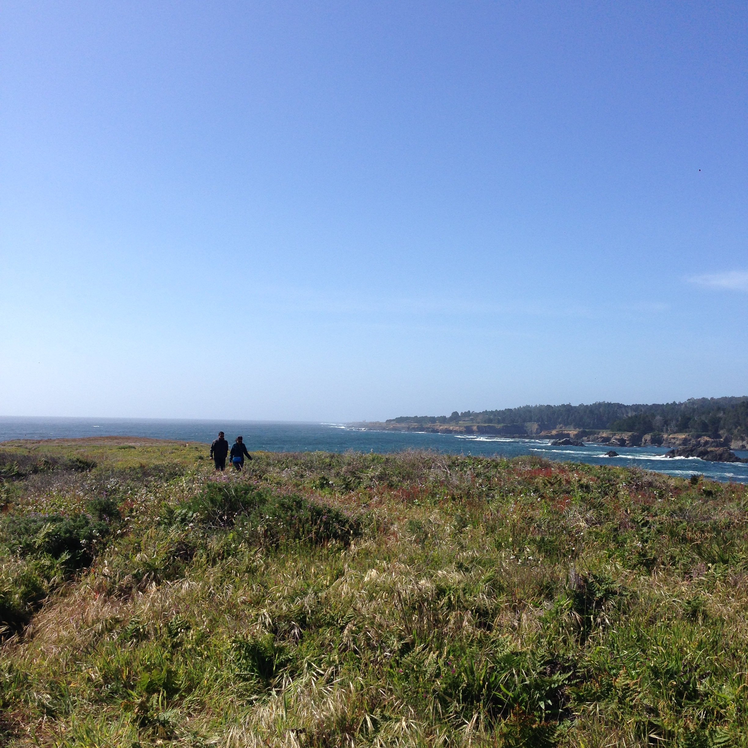 Day1_Mendocino Headlands.jpg