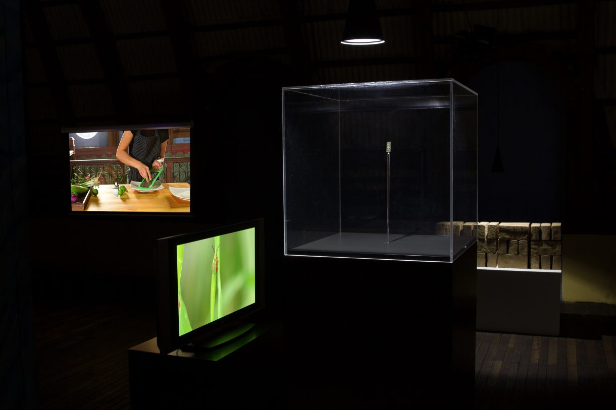 Richard Ibghy and Marilou Lemmens,  The Golden USB,  2014-ongoing. multi-media installation.