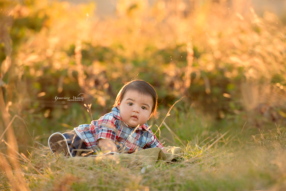 6 month baby photos | Oroville Photographer | Fall photography | Genevieve Waters Photography