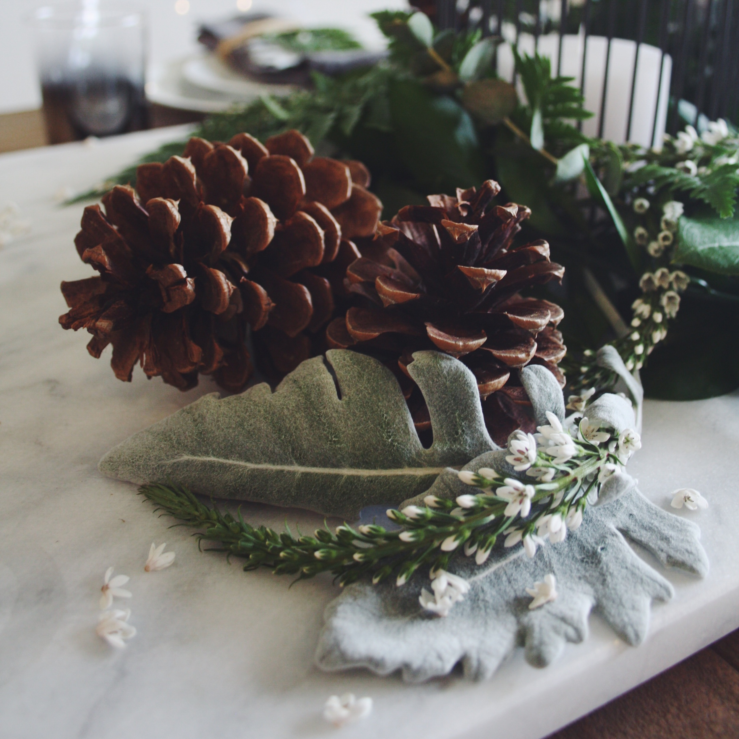 pinecones and greenery - the habitat collective - www.thehabco.com