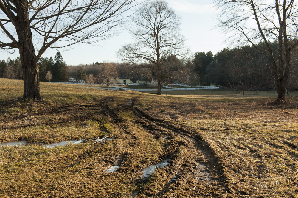 New Pond Farm  2013