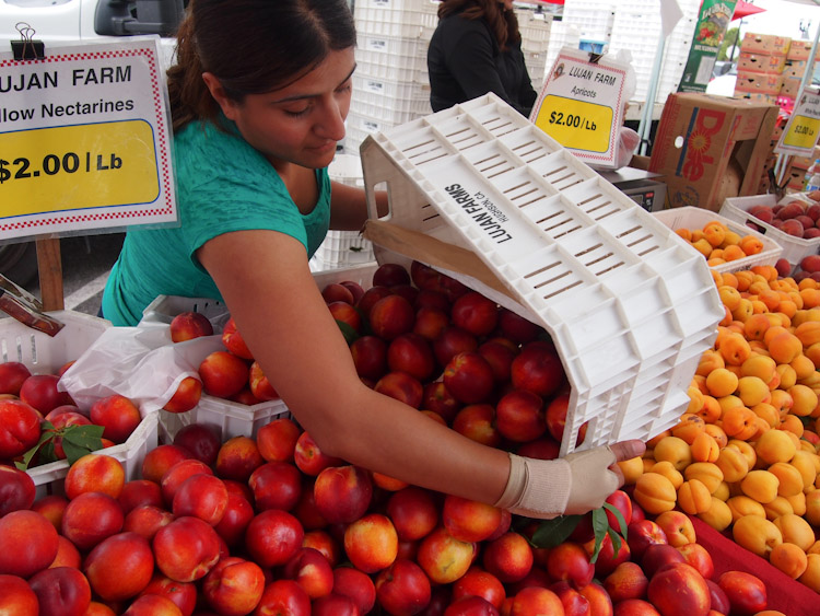 you know spring is upon uswhen farmers markets start selling plump and juicy nectarines, apricots, plums, peaches and pluots.