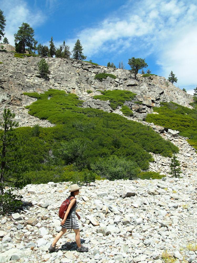 Faucherie Lake, Tahoe National Forest, California | vermilionroots.com
