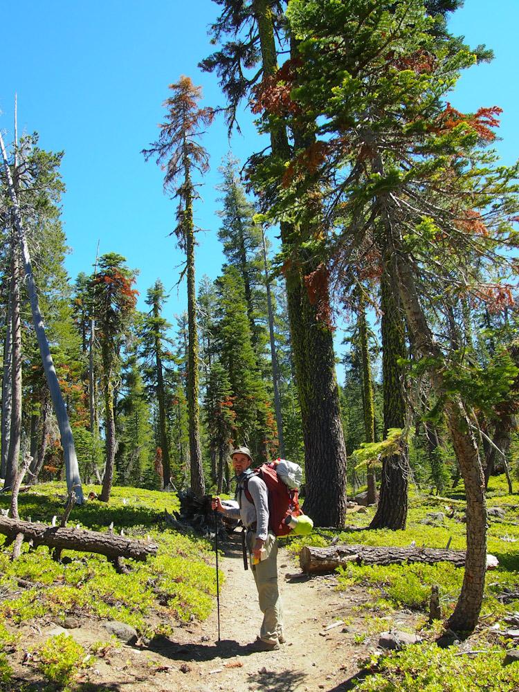 Lassen Volcanic National Park, California   vermilionroots.com