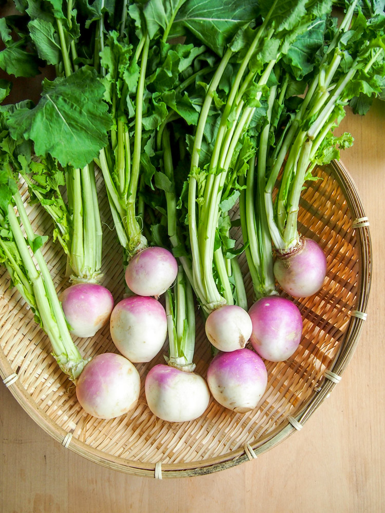 Spring Discovery: How to Cook the Season's Best on VermilionRoots.com. Featured vegetable of the week: turnip.
