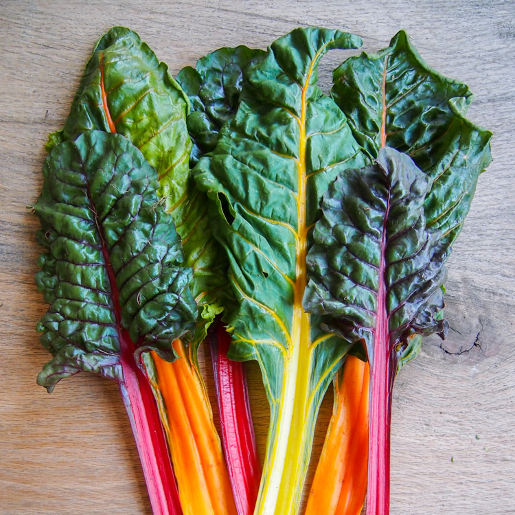 swiss-chard-square.jpg