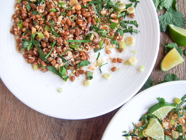 Malaysian Herb Salad (Ulam)   vermilionroots.com  . A tantalising Malays salad made with raw herbs, coconut, peanuts, lime juice, and your favorite grains such as wheat berries or rice.