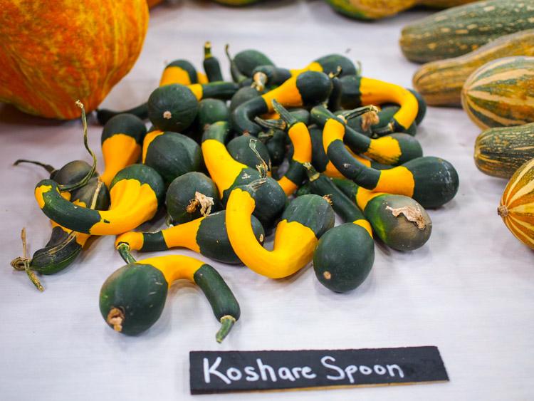 koshare-spoon.jpg