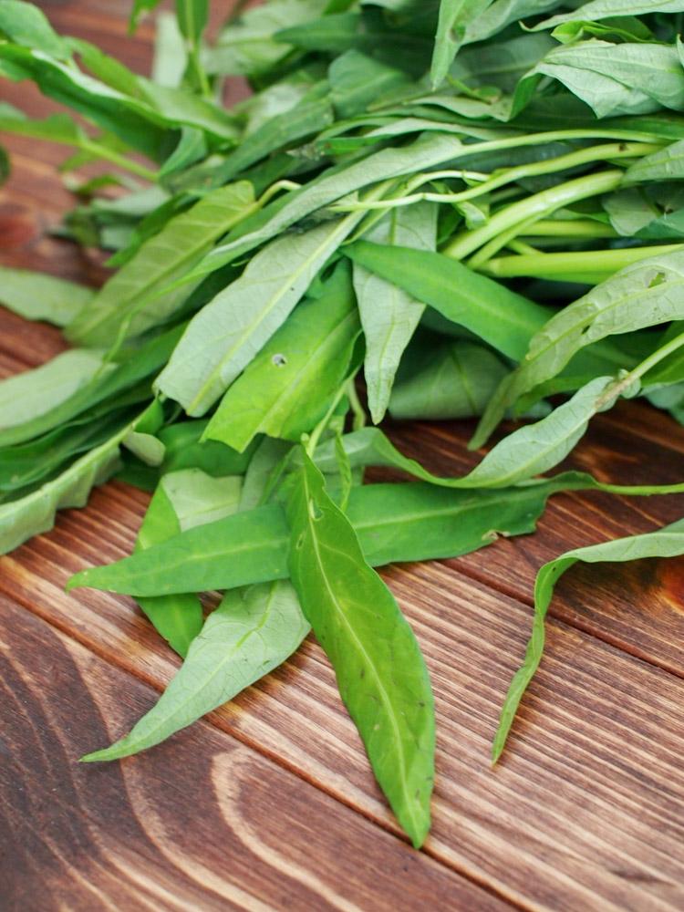 water-spinach-leaves.jpg