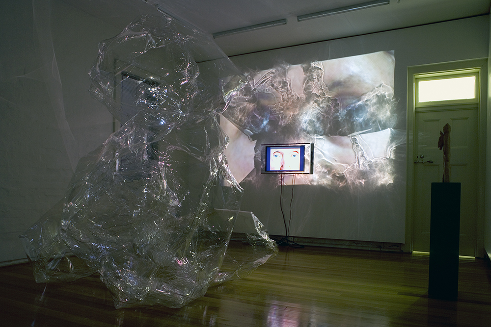 Mikala Dwyer, The Shape of Thoughts Own Making, 2007, Peloton, Sydney
