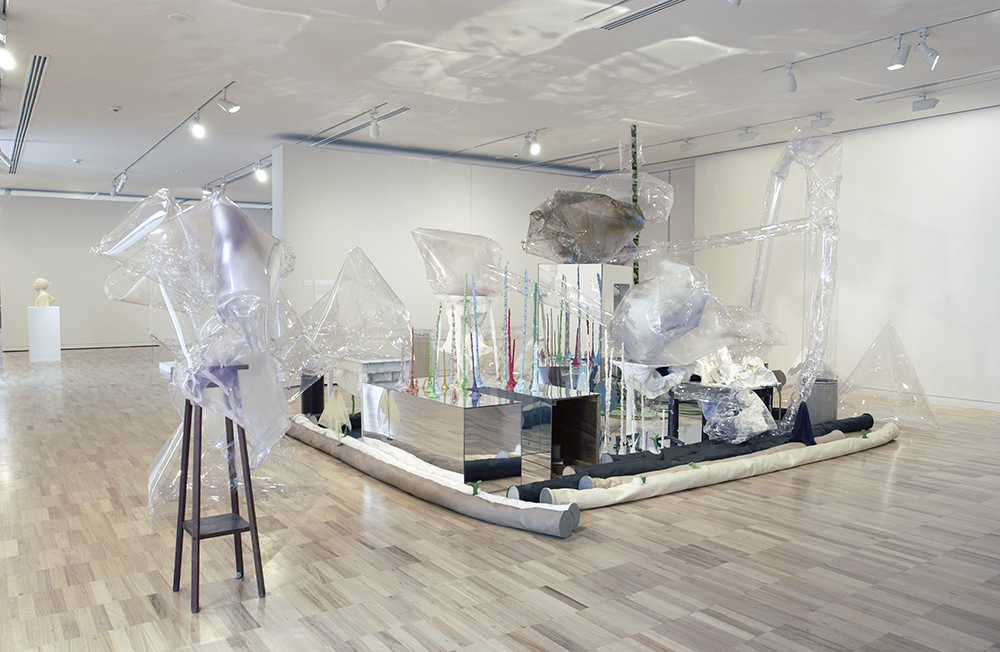 Mikala Dwyer | Still Life, 2003, Art Gallery of New South Wales, Sydney