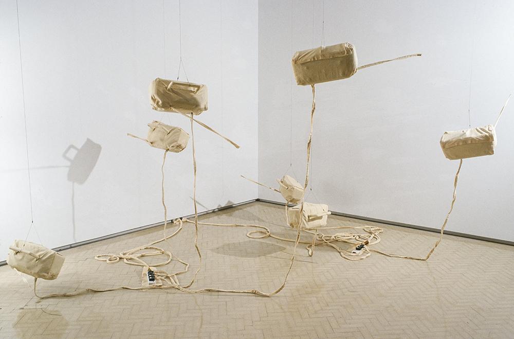 Mikala Dwyer | Museum of Contemporary Art, Sydney, 2000