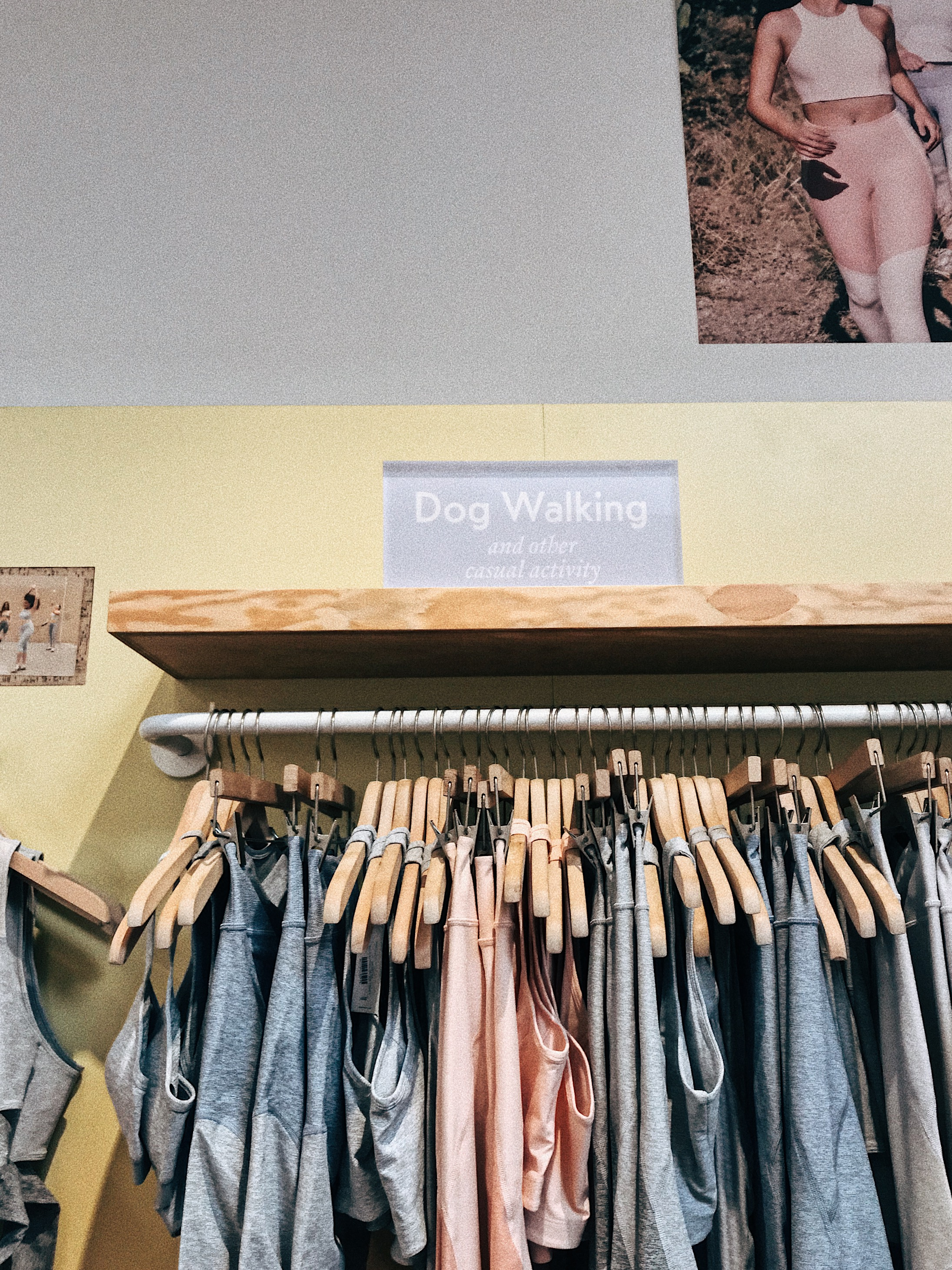 """Jury is still out about how I feel about A)the hype of this brand with people saying its """"the new Lulu"""" pfff. B) expensive loungewear specifically for walking dogs. Question mark. And for someone who friggin loves dogs and will own hundreds one day I'm still like """"reallllllyyyy?"""""""