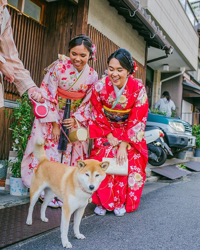 ❤️🐶❤️ . . . . . . #shibainu #kyoto #kyotojapan #kimono #yumeyakata #travelblogging
