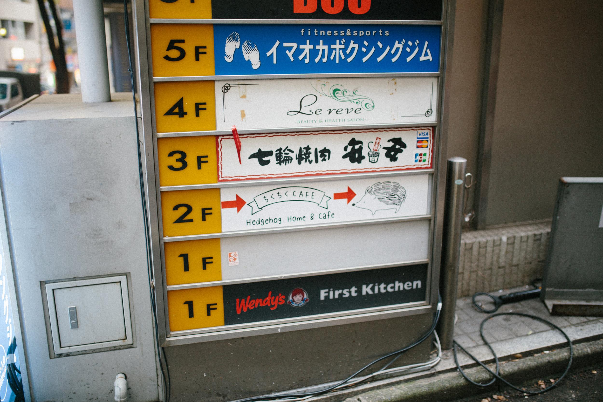IMG_9861.jpg
