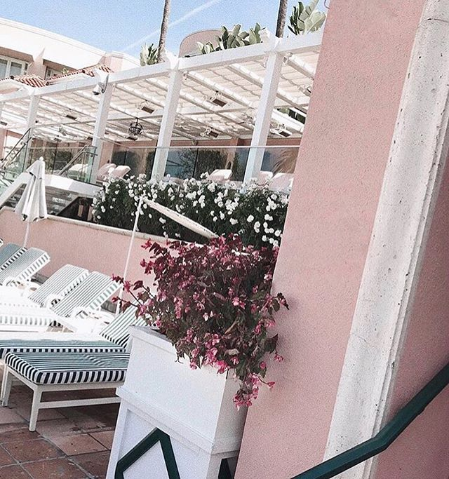 @bevhillshotel by far is one of my FAV hotels in the world! #iconic 🌸