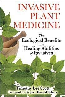 invasive plant medicine.jpg