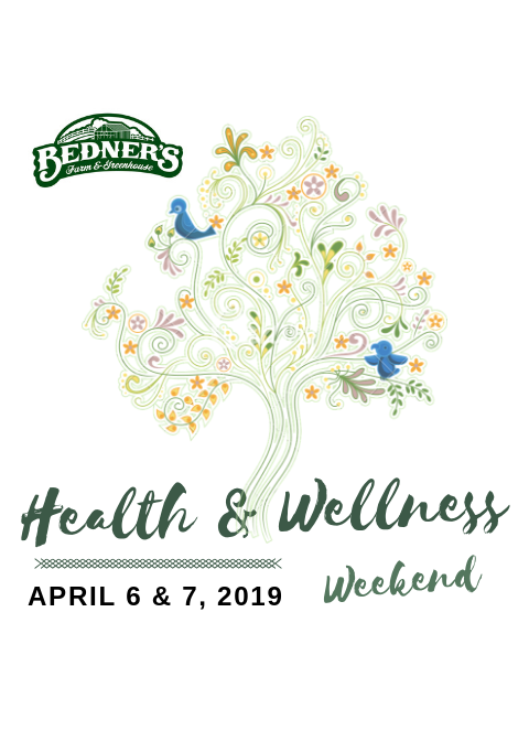 bedners health-wellness-logo-3.png