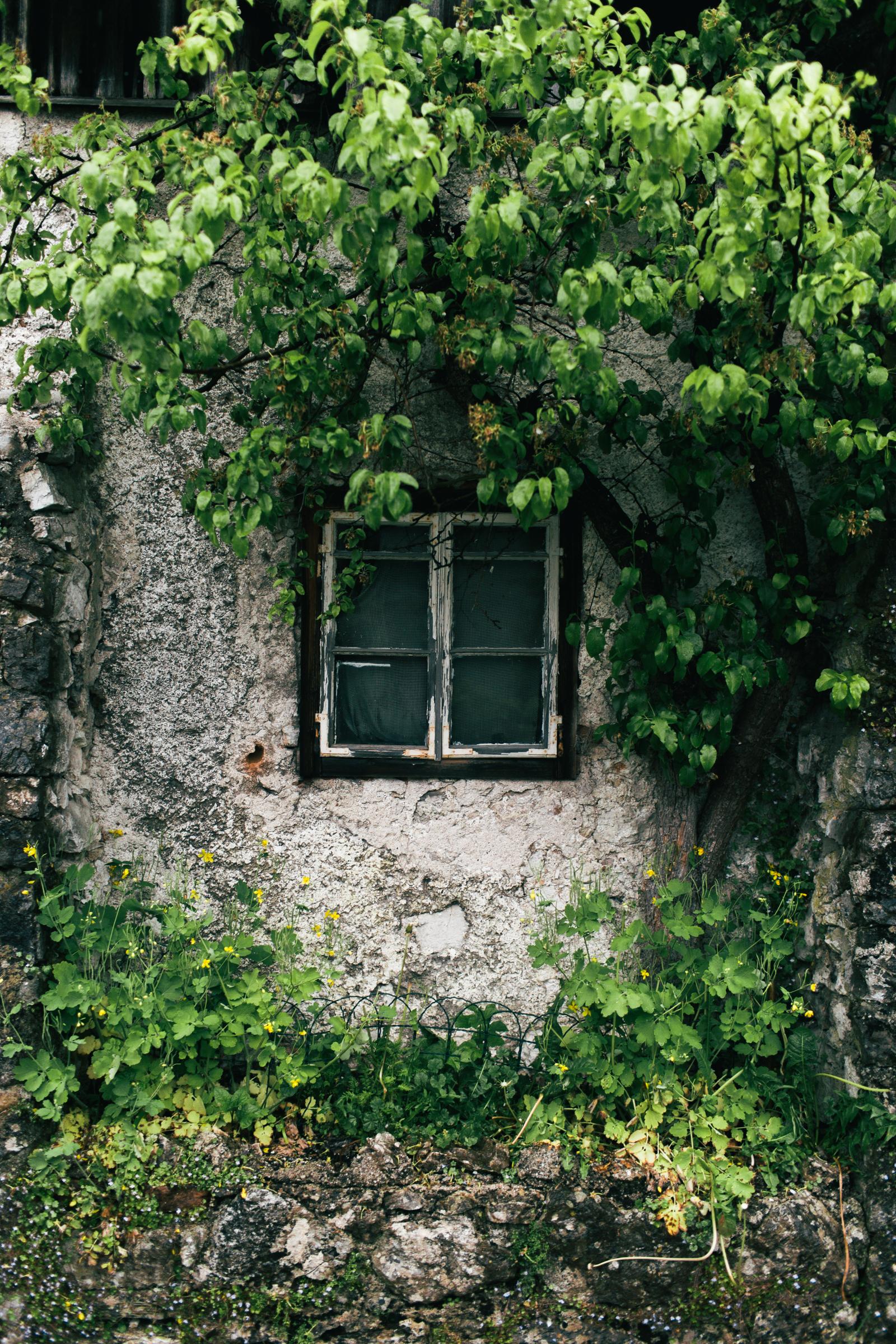 Hallstatt-web-10.jpg