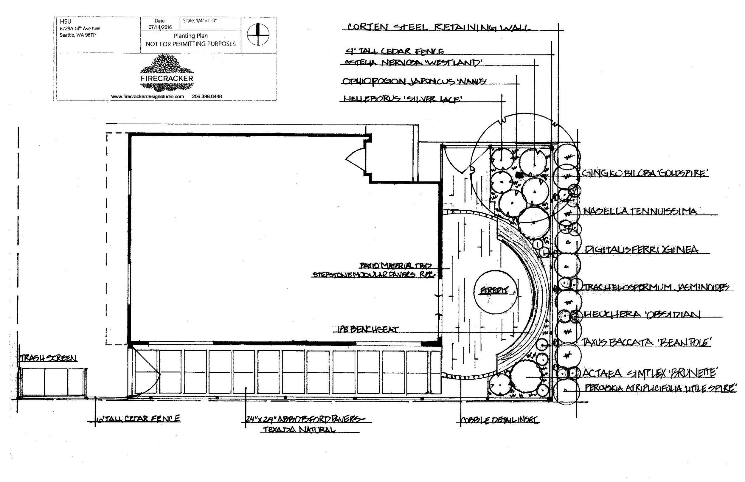 Hsu planting plan concept - NOT FOR PERMITS20160720_16122998-page-001.jpg