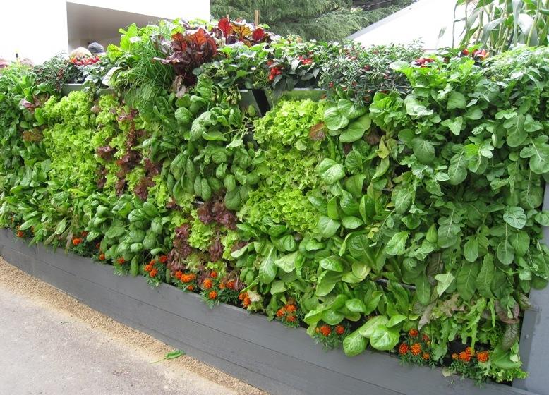 vertical garden Mobiwall