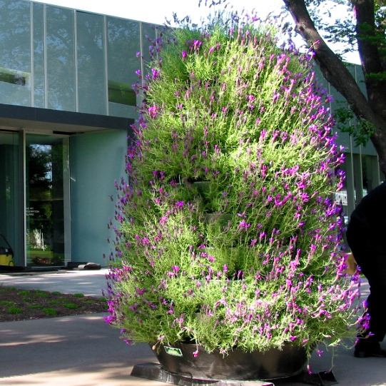 vertical garden DIY kit -tower