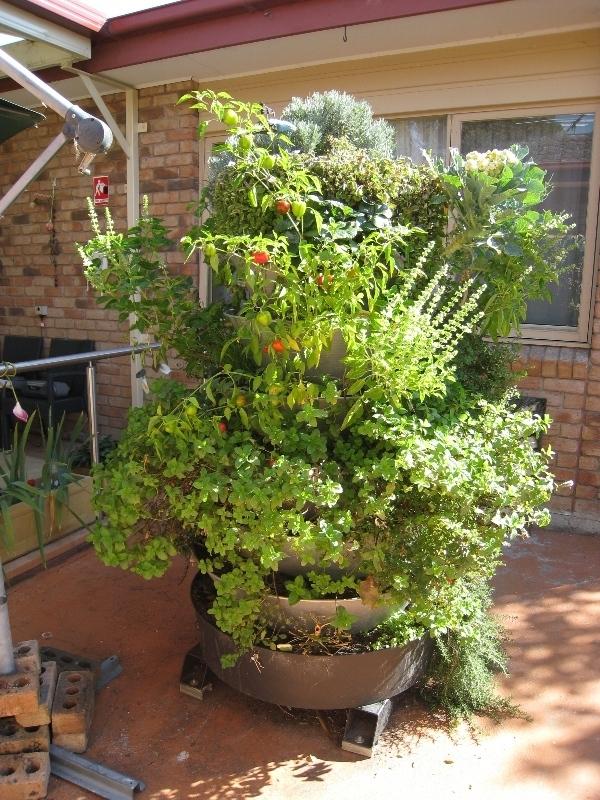 ertical garden DIY kit- tower