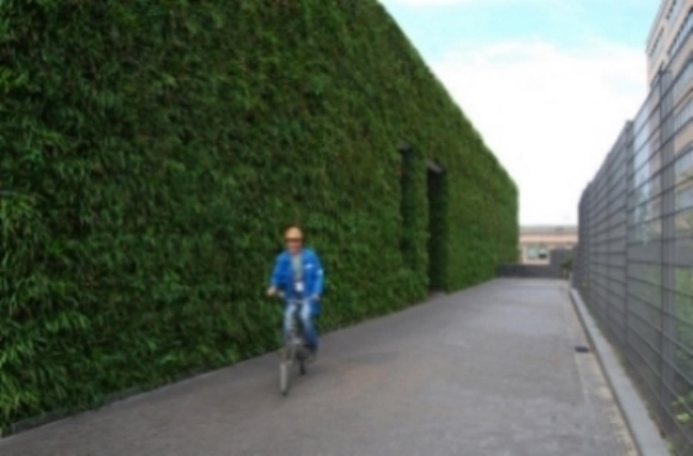 vertical garden greenwall