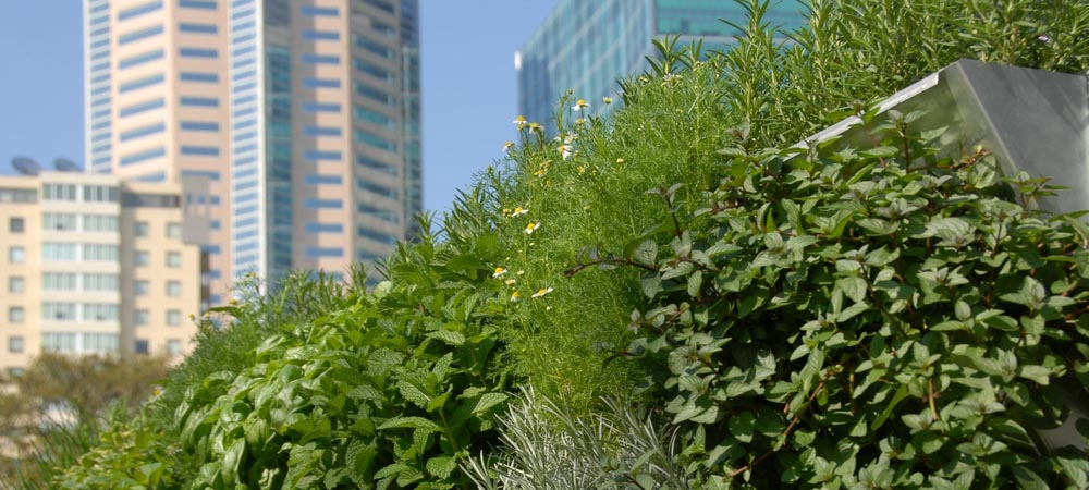vertical-garden-system-mobiwall.jpg