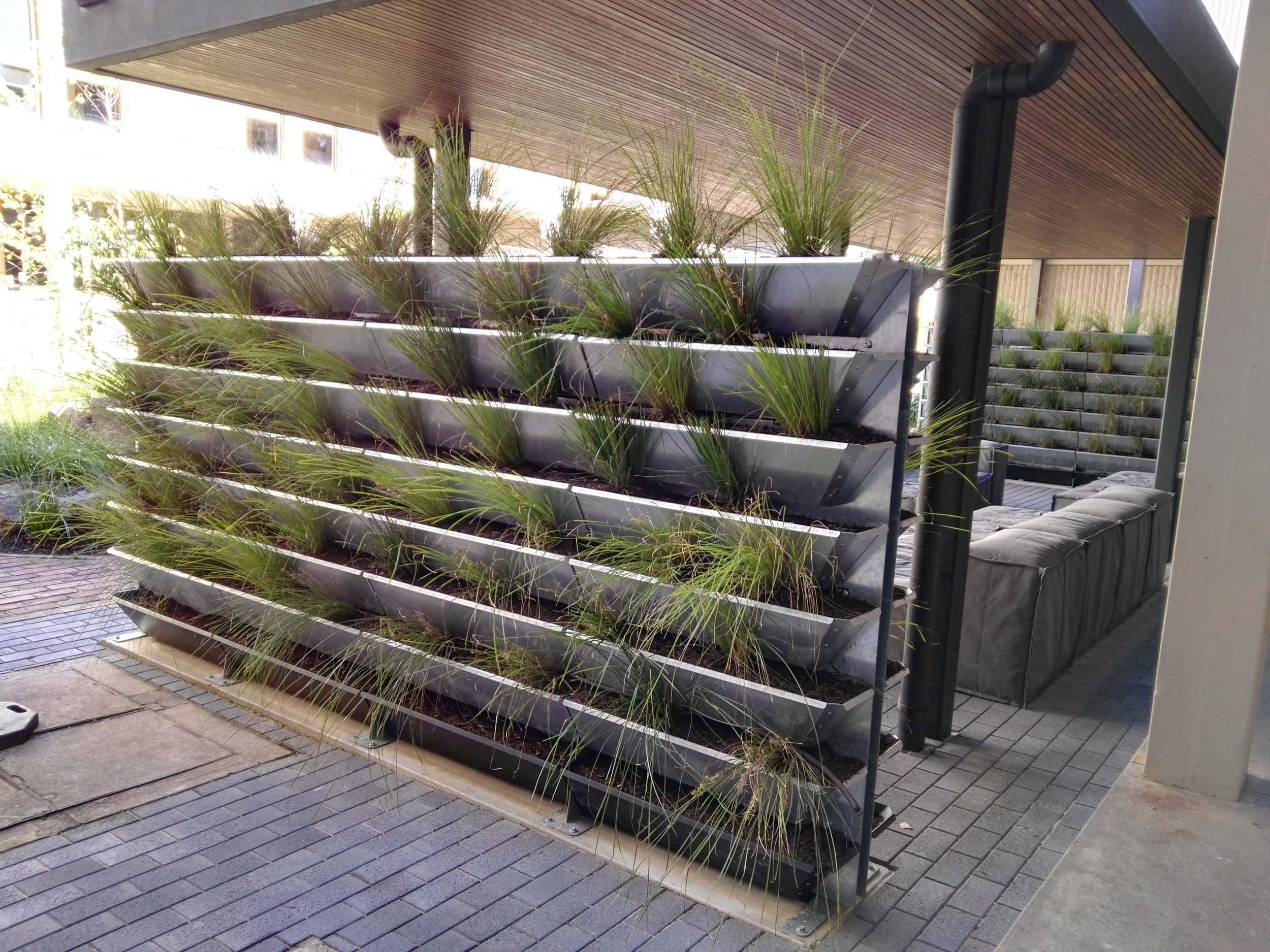 Double sided vertical garden at Magill Campus