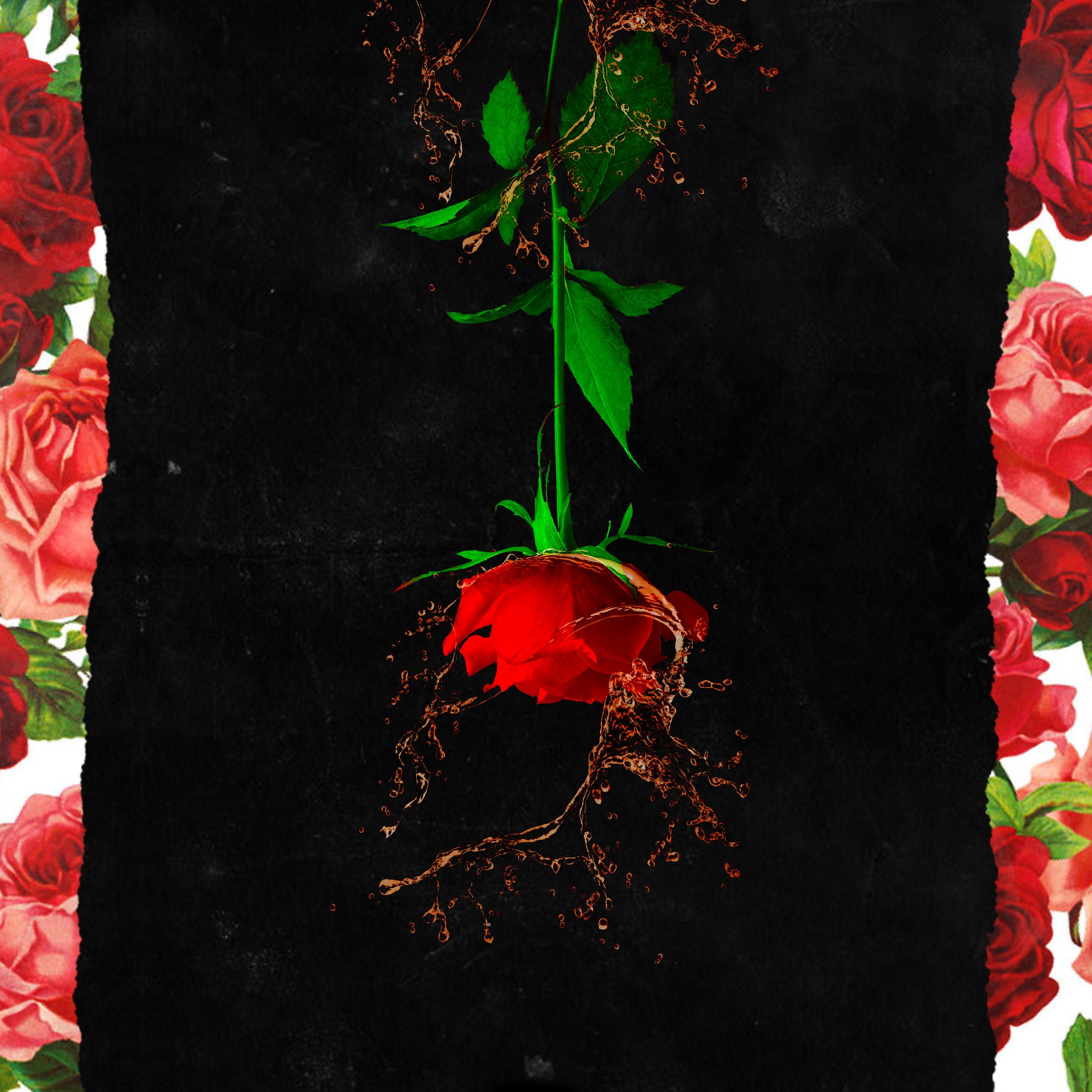 Cognac & Roses, self-titled debut. Released 3.23.18