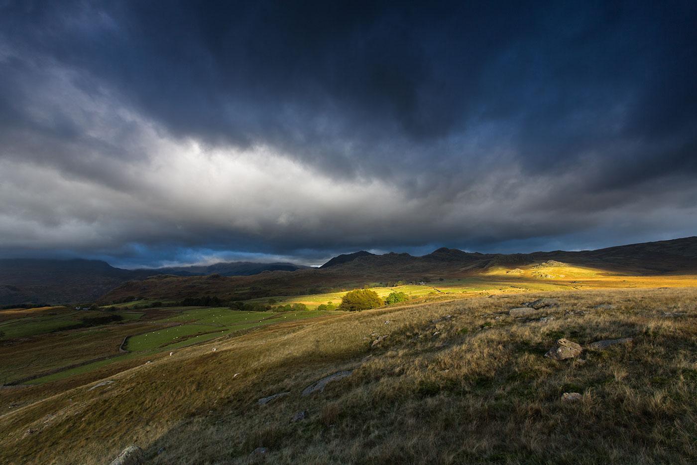 Birker-Moor-failing-Light.jpg
