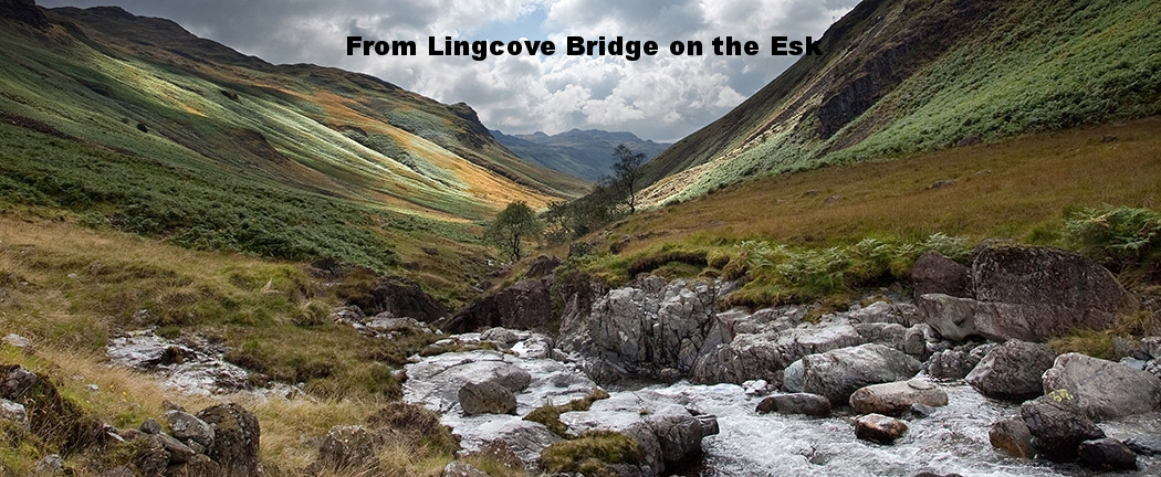 Upper-Esk-looking-back-from-Lingcove-Bridge-ls.jpg