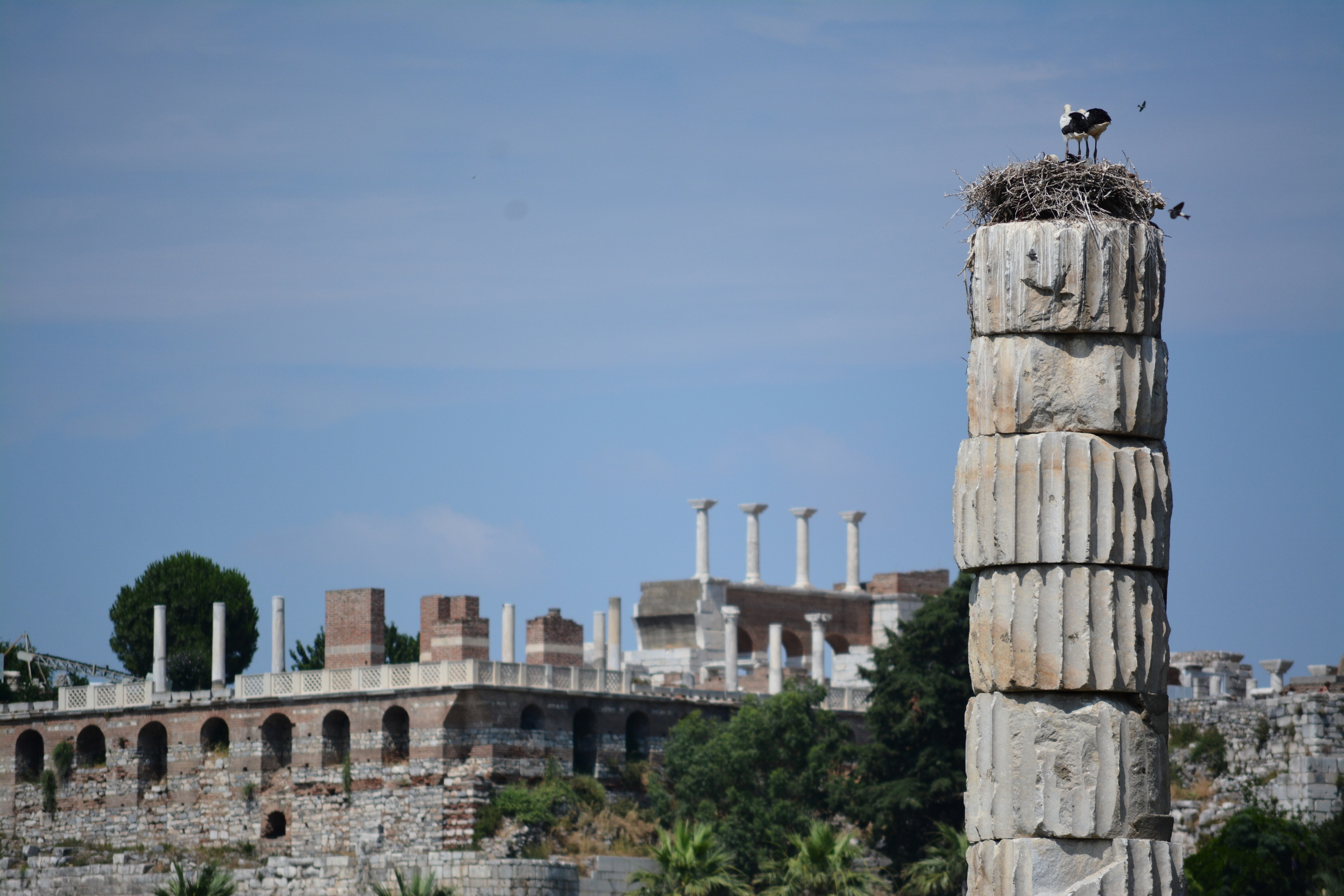 Photo: Ali Mert Özgün / Photography Tour Guide - St. John Basilica view from Artemis Temple