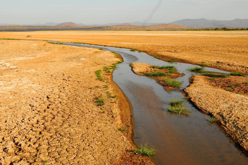 LAKE EYASI -