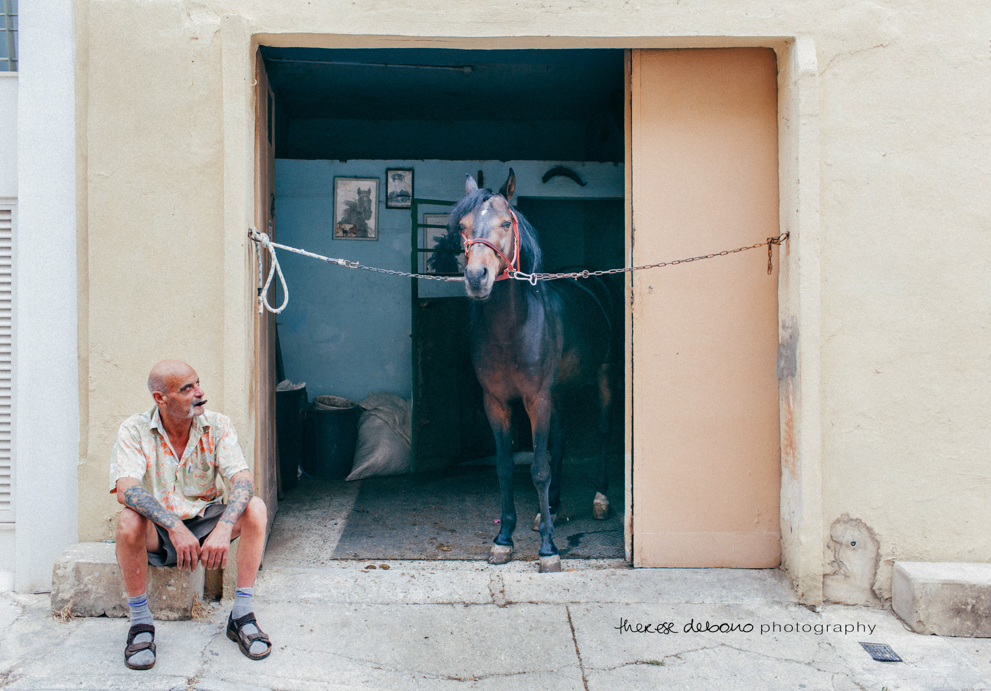 Frans and his beloved horse: 24th June 2015