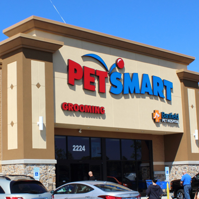 Create all videos, photo galleries, and articles for PetSmart's consumer app.