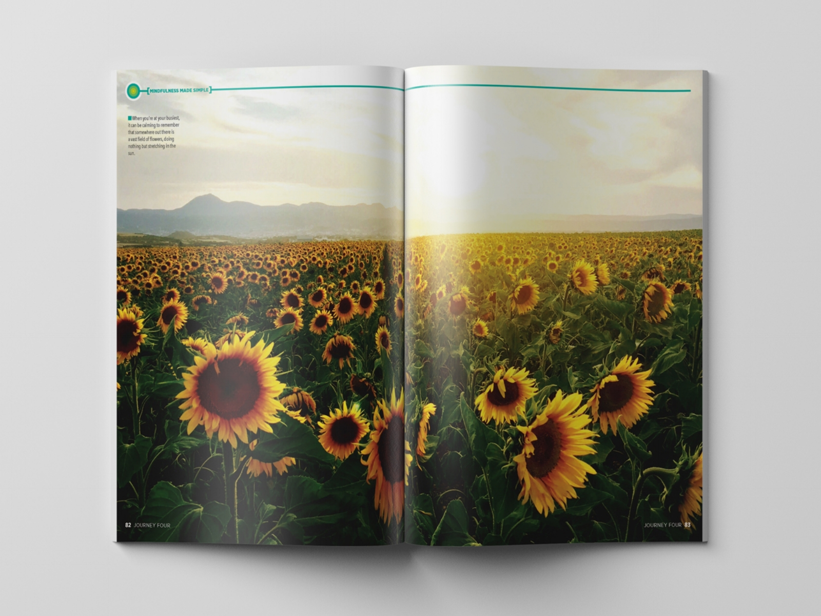 MINDF-Sunflowers-(44).jpg