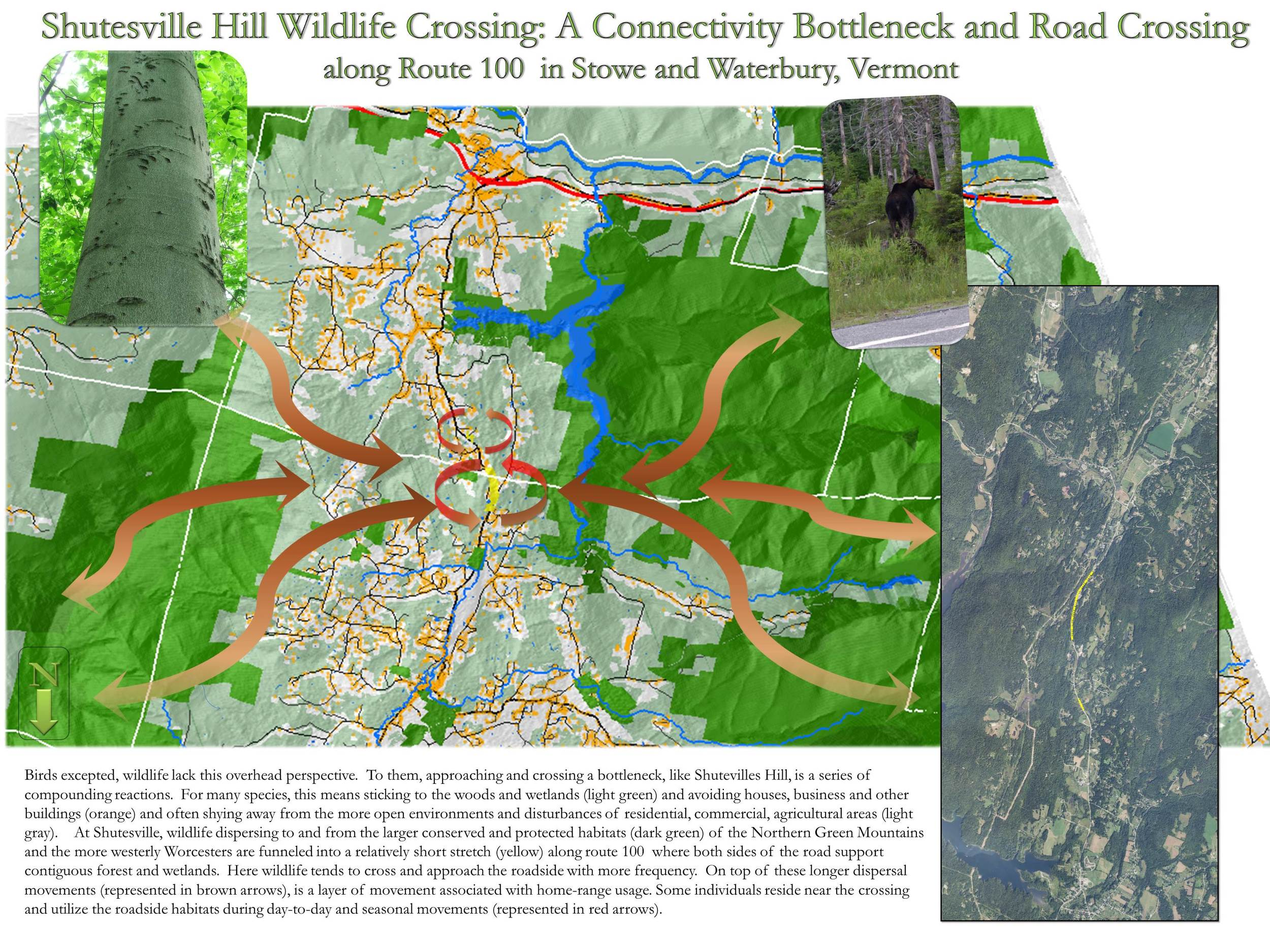 IN 2010, Native Geographic helped identify a critical Wildlife Road Crossing between the Northern Green Mountains and Worcester range (click image for more details) of Vermont.  Stowe Land Trust considered this and many other regional studies while identifying strategic conservation priorities.