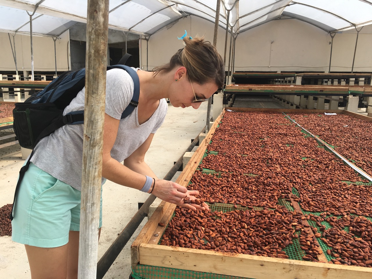 Monica Rogan, co-owner of Goodnow Farms, inspects cacao beans at the source