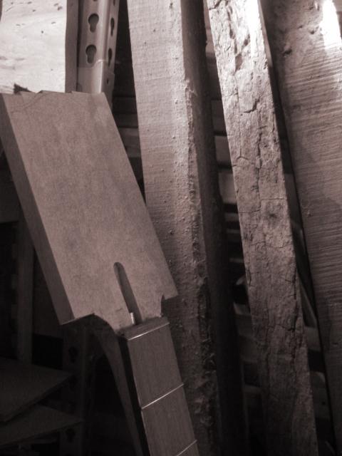 woodlife1.jpg