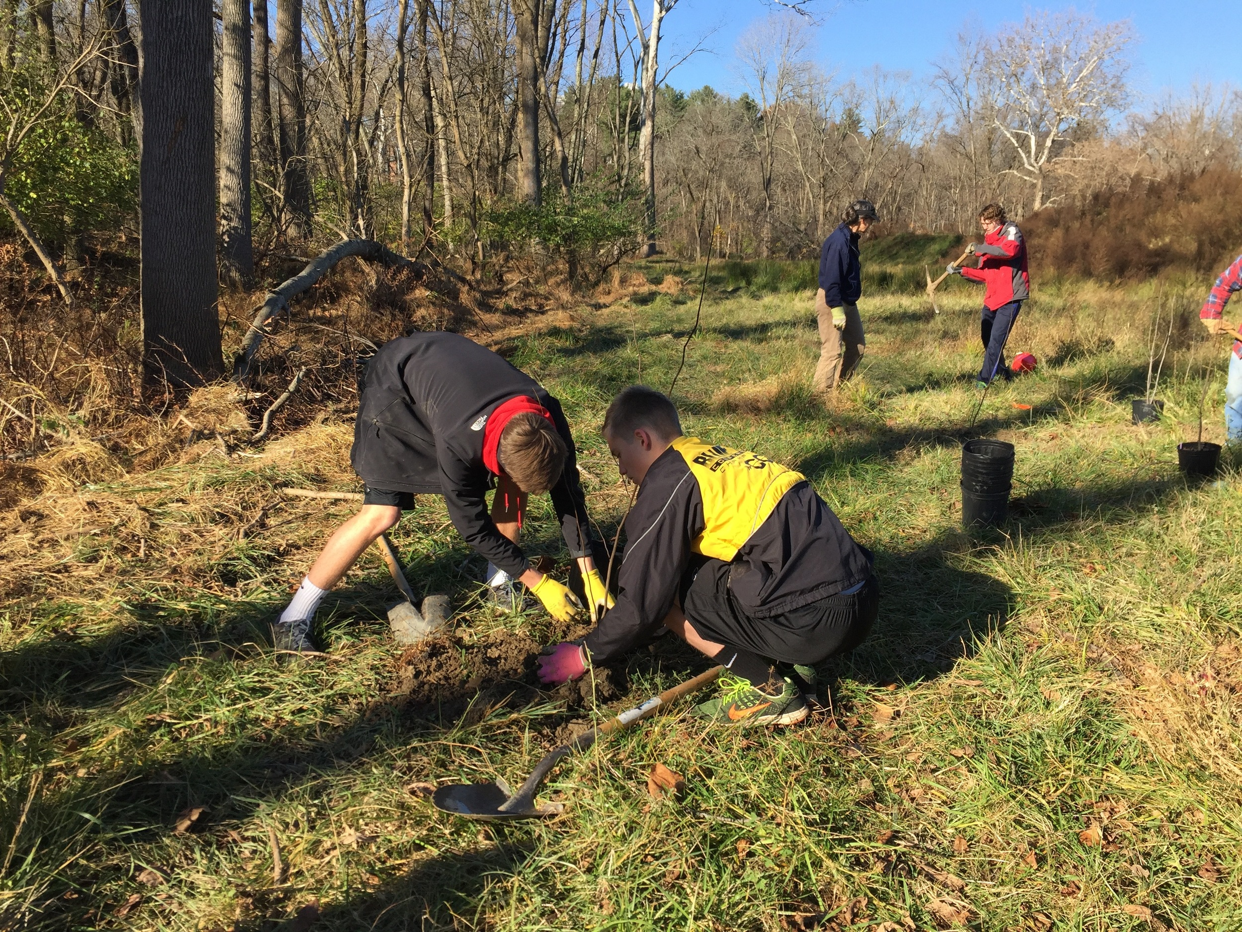 Students from Newark High School planting trees and shrubs along the White Clay Creek.