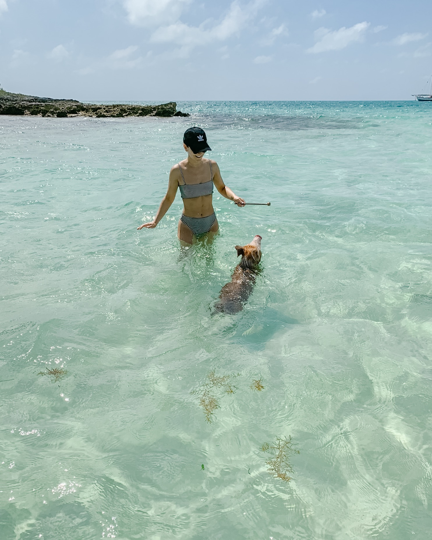 Swimming Pigs, Eleuthera, Bahamas.JPG