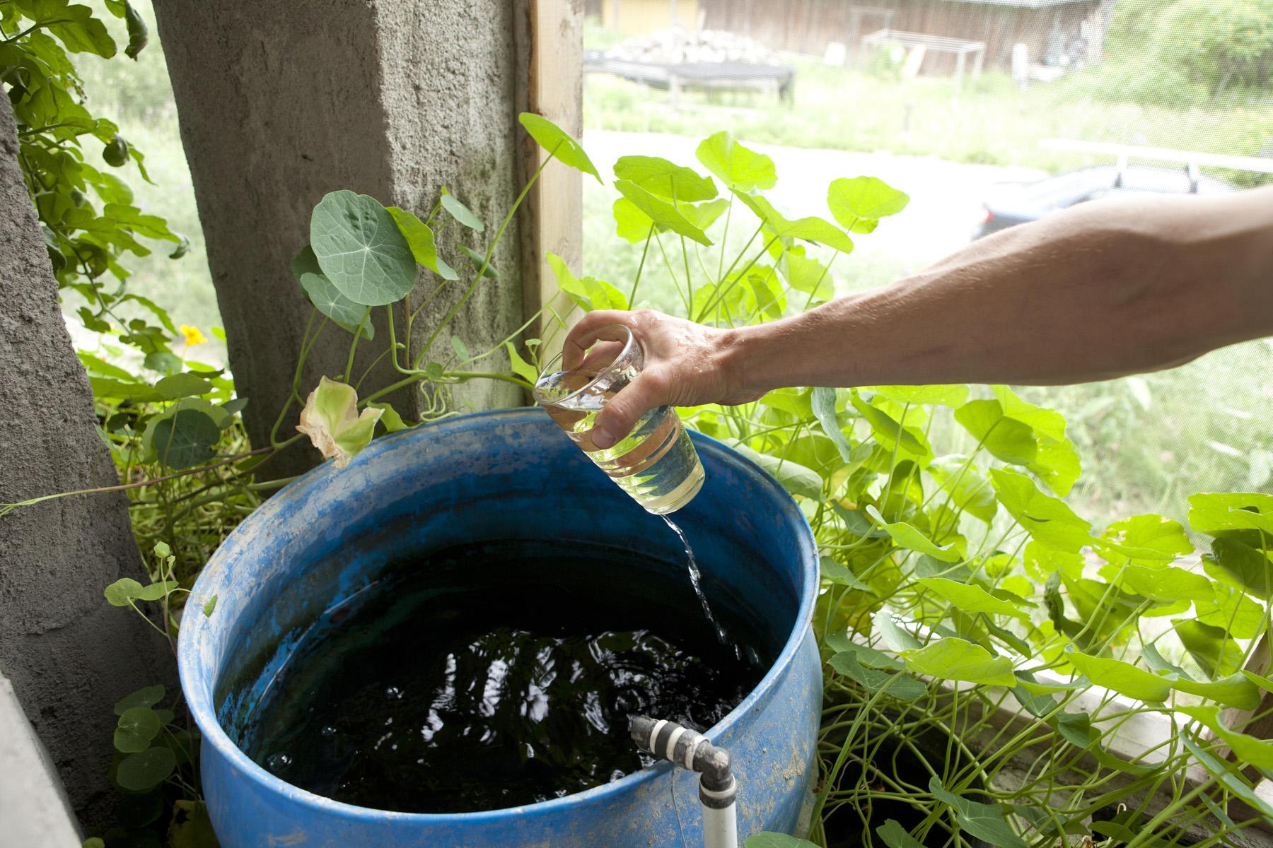 Nutrient Rich Wastewater
