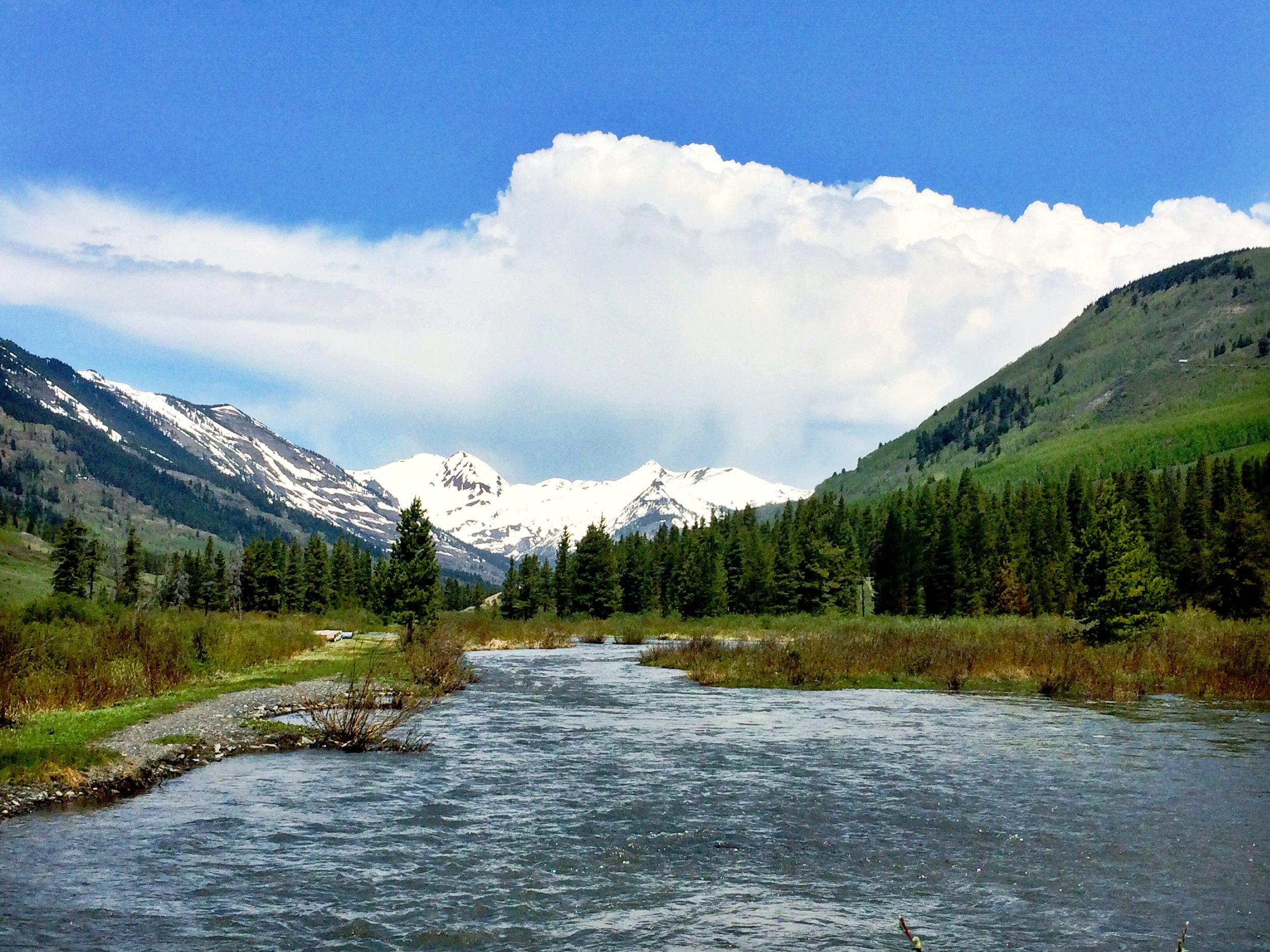Paradise Divide, from Lower Loop trail