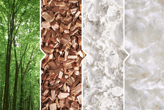 A shortened image guide of Tencel production, which begins with trees, lead to wood pulp, then chemical processing, and finally the base fabric for clothing.