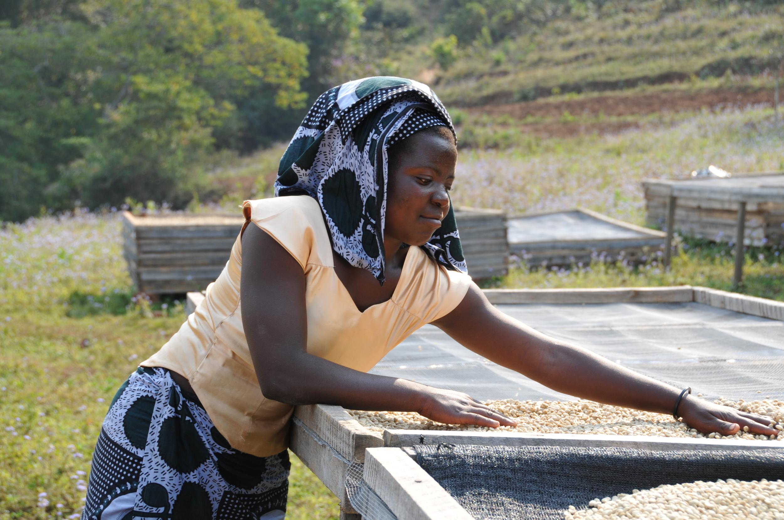 Agnes, Coffee Farmer