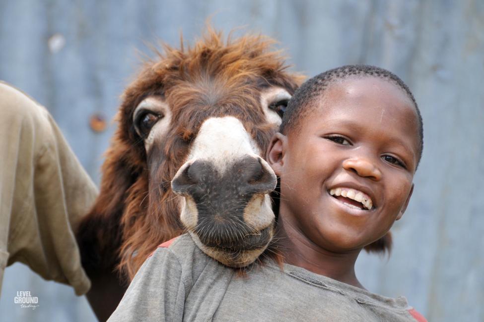 tanzania boy and donkey