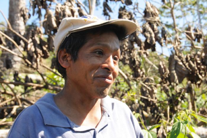 Julio, coffee farmer in bolivia