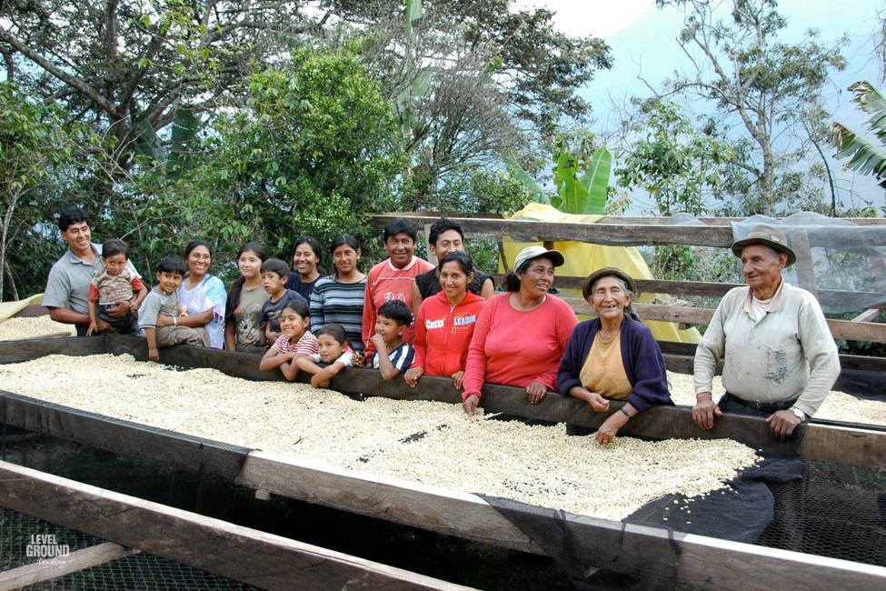 Coffee farmers in bolivia